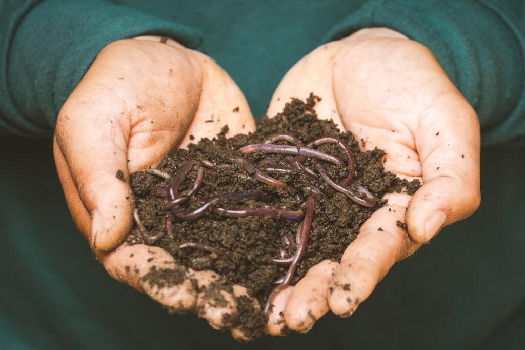 Comment faire son compost ?