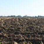 Comment rendre un sol moins acide ?
